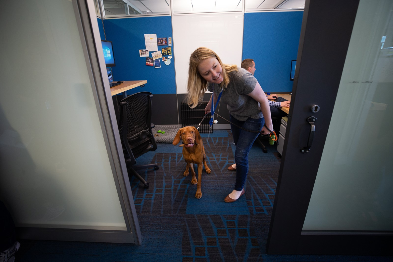 Print A tech firm's cloud canine Every dog has his workday at